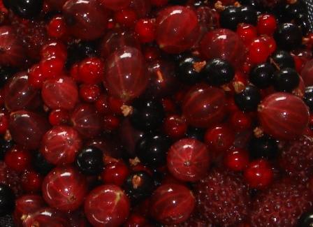 Blandede bær - spiseklare