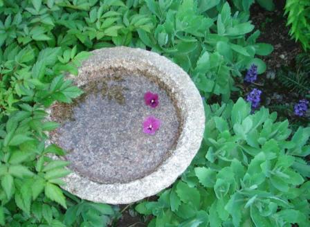 Fuglebad som dekorativt indslag