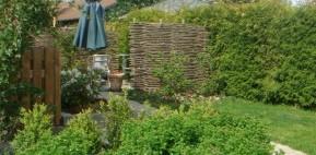 Pilehegn ved terrassen