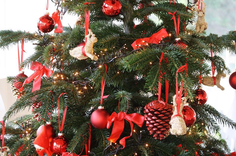 Sådan mindsker du antallet af småkravl i juletræet